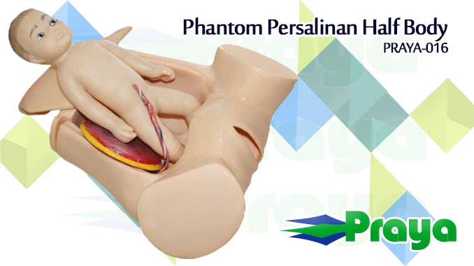 Phantom Persalinan Normal