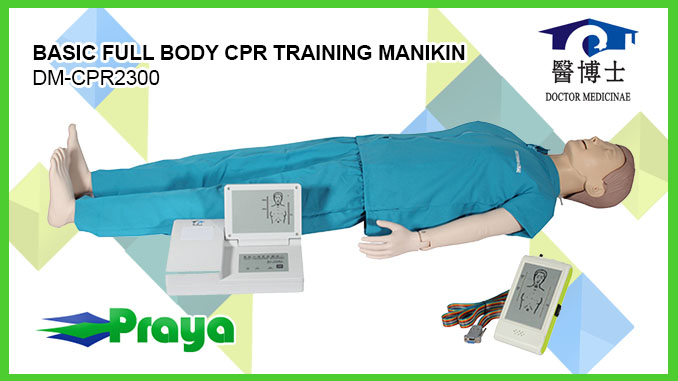 BASIC FULL BODY CPR TRAINING MANIKIN DM CPR2300